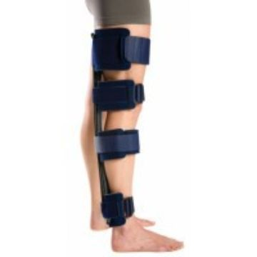 Immobilizers