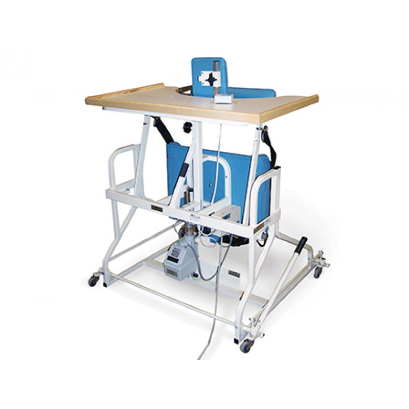 Bariatric Electric Stand In Table