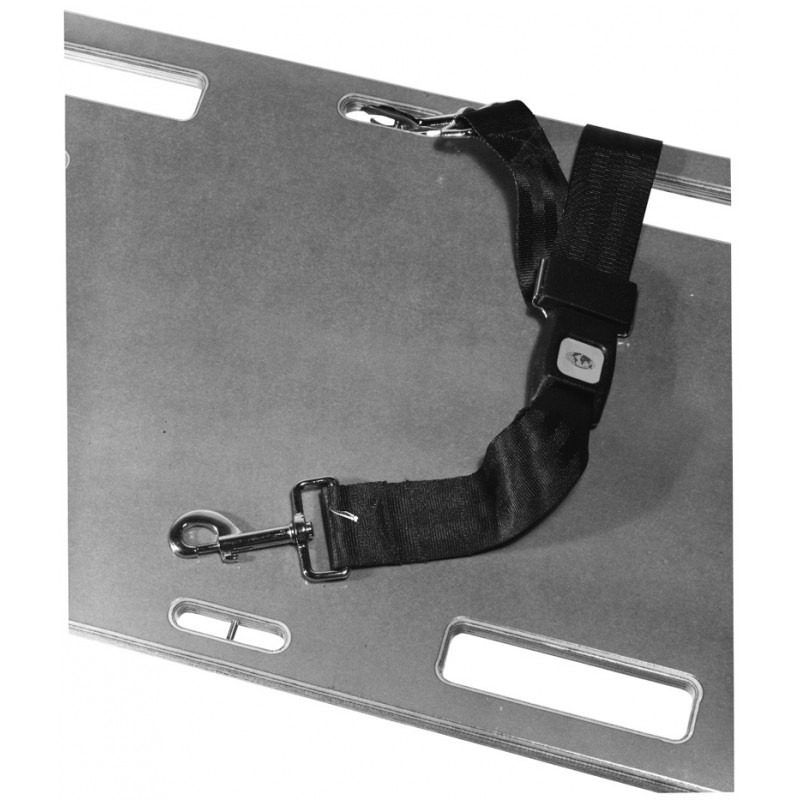 Seatbelt Strap with Speed Clips